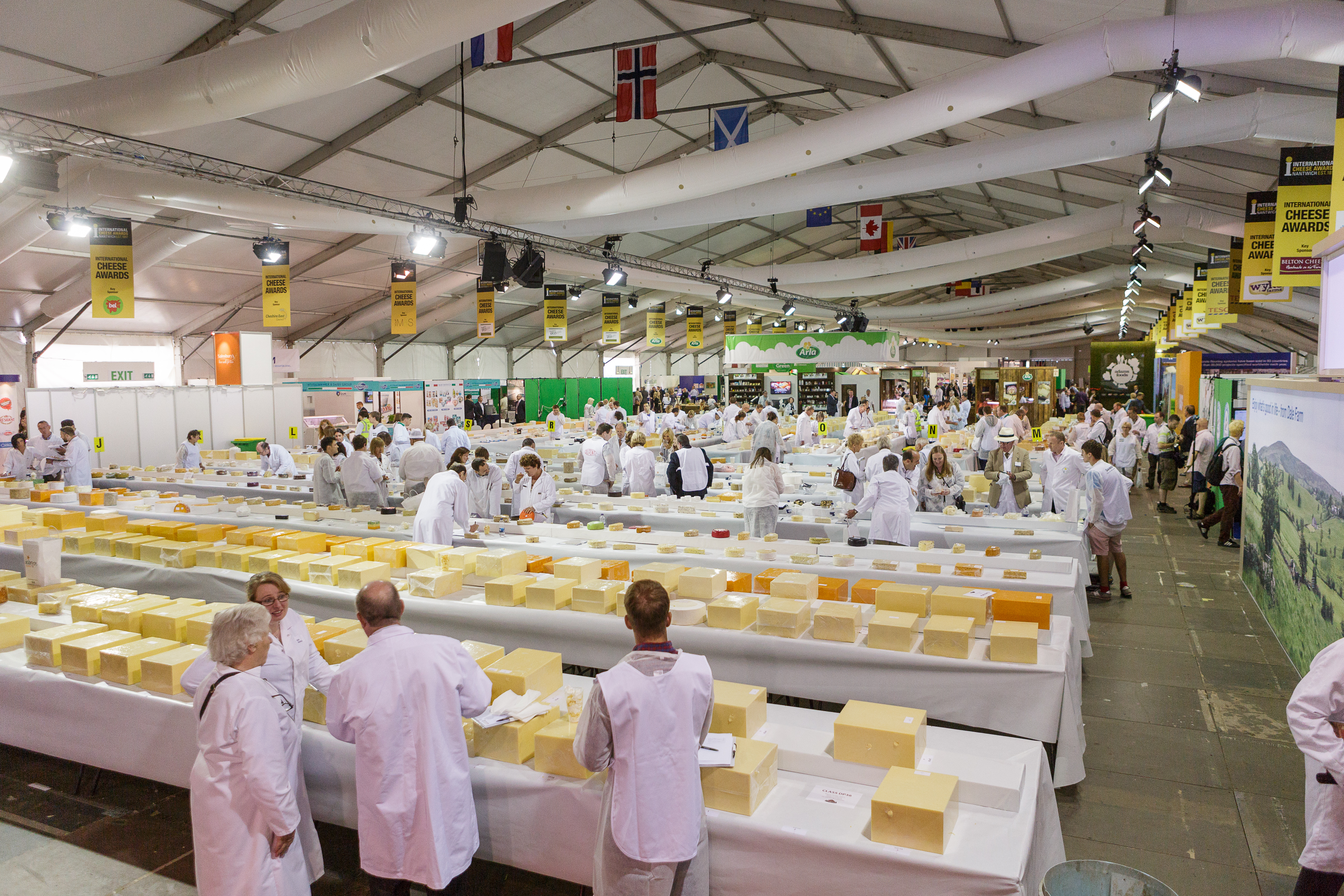 Cheese2014-093